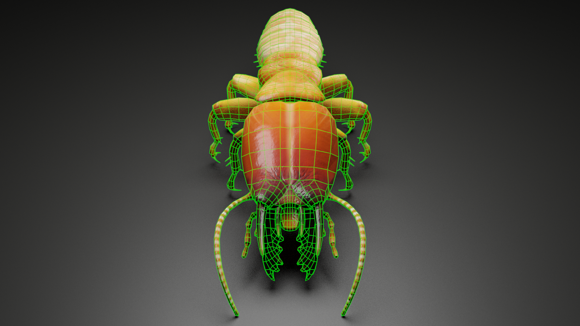 Termite Monster Front View Wireframe