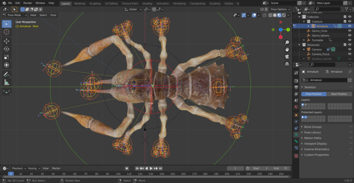 Camel Spider Rig, Top View