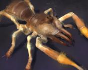 Camel Spider Monster, Unity 3d Game Asset