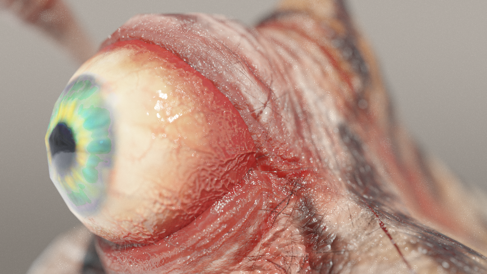 Eyeball Closeup - Eyeball Spine Slug 3d Model