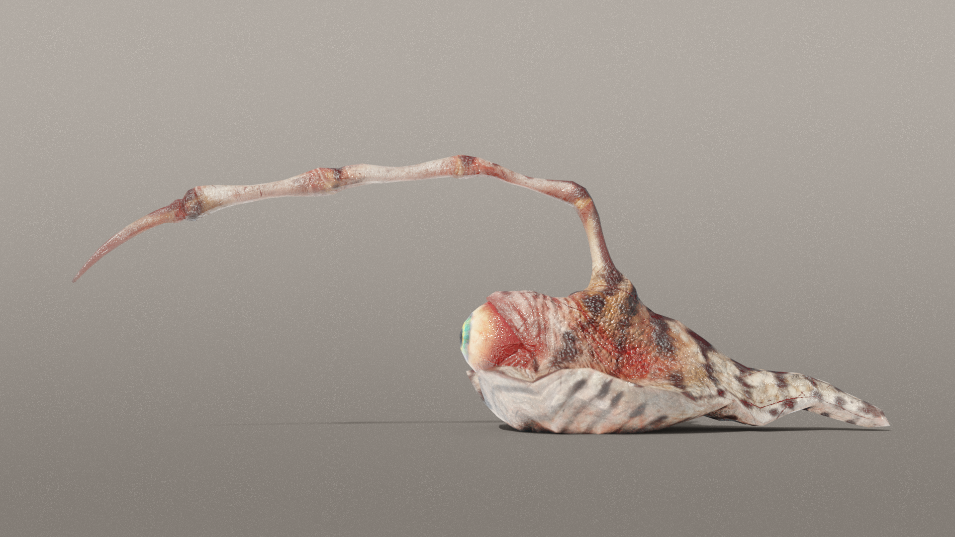 Attacking Eyeball Spine Slug 3d Model