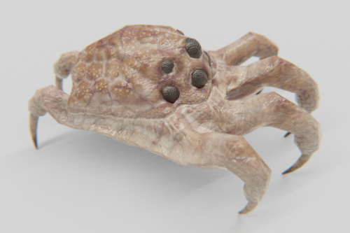 Kranion Drone - Basic View 2 - 3d Model of Facehugger or Headcrab