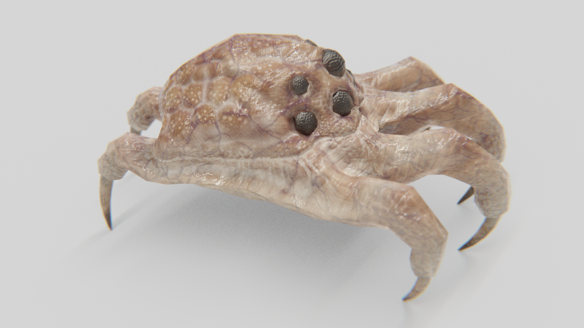 Kranion Drone - Basic View - 3d Model of Facehugger or Headcrab