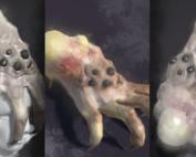 Kranion Plague Spreader - Headgrabber Facehugger Headcrab Digital Painting (Unity 3d)